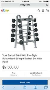 York Rubberized Straight Barbell Set