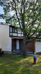 Townhouse for Rent - 1097 Millwood Crt.