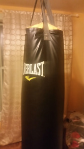 Punching Bag, Great Condition, EVERLAST