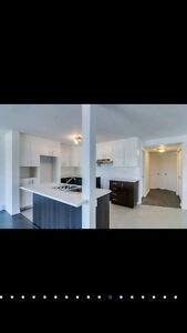 Looking for roommate for dec 1st Gatineau Ottawa / Gatineau Area image 4