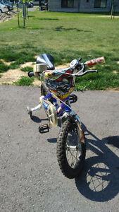 Bike for boys 4 to 6 yo