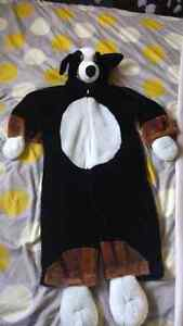 Costume 2-4 Kingston Kingston Area image 1