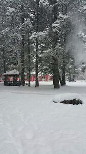 Skidoo, snowshoe & ski!
