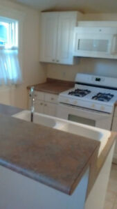 Beautiful furnished 3 bdrm house in Crystal Beach
