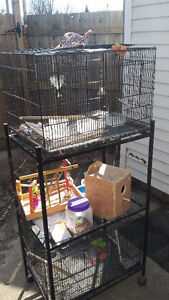 2 cages & stand