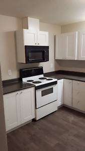 Pet-friendly 3 Bedroom Renovated Unit