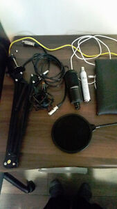 Audio Technika AT2020 Mic, Stand, Blue Iceicle, pop filter