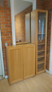 Storage Units with Shelves