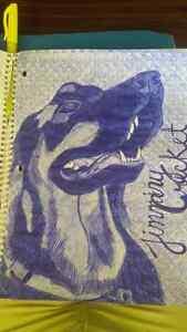 Hand Drawn Portraits --PET & PEOPLE -- Kingston Kingston Area image 5