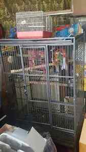 grosse cage a peroquet equiper 450$