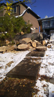 AFFORDABLE TREE REMOVALS