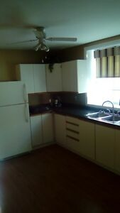 In London King Street 2 Bedroom immaculate condition apartment! London Ontario image 6