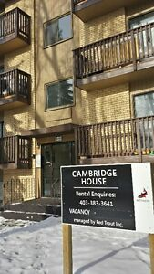 Cambridge House Is Waiting For You To Call It Home!