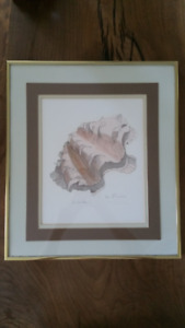 Framed Signed Wall Art Fluted Clam 16x14