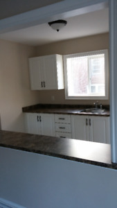 4 Bedroom House Available Nov 1st - $1300/month   utilities