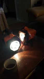 Set of 2 flashlights