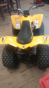 2007 can am 70