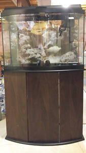 36 Gal Curved Front Aquarium-Filter-Heater-Air Pump-Background