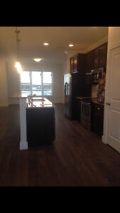 1 Bedroom Available for Rent in Rosewood- $500