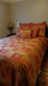 Queen comforter and scatter pillows / cushions
