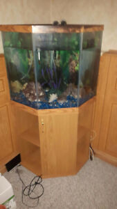 3 SIDED FISH AQUARIUM WITH STAND
