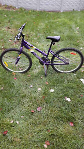 Girl's Youth Miuntain Bike