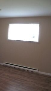 Large two bedroom apartment in the East End St. John's Newfoundland image 3