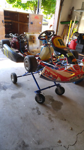 2010 birel am 29 go kart need gone will SEPERATE everything come
