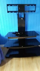 SHEDIAC:  SWIVEL mount rack for TV or Monitor