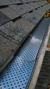 Eavestrough Cleaning/Fall Clean-ups! London Ontario image 8