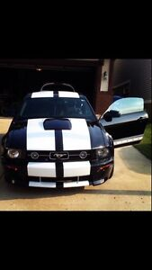 2008 Ford Mustang Beautiful upgrades !