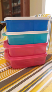 Tupperware Divided Containers - 4