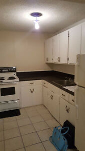 Like It  Cool? You Will Love this Large 2 BDR Basement
