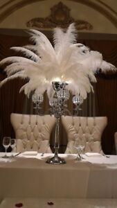 **{Ostrich Feather Centerpieces for Rent}**