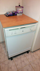 portable dishwasher  works perfectly..moving sale special price