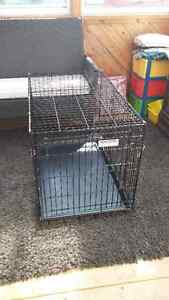 for sale dog kennel