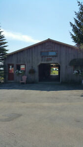 11 Stall Horsebarn with 2 large Paddocks