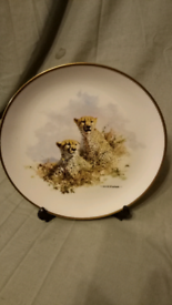 David Sheperd Limited Edition Plate