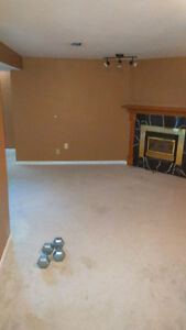 fully finished basement room for rent.