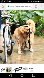 iso bike attachment for biking with dog