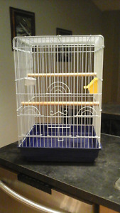 PENDING           Bird cage for sale