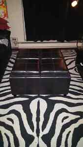 4 chamber flippable top ottoman Windsor Region Ontario image 2