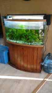 46 Gallon Bow Front Fish Tank with stand