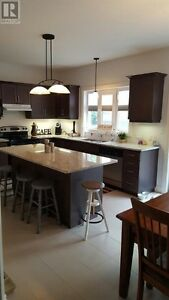 Fully prof fin basement, former model-upgraded AAA Kitchener / Waterloo Kitchener Area image 2
