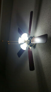 Ceiling fan with 3 lights