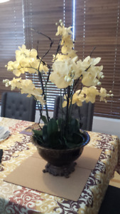 Miscellaneous Home Decorations