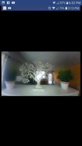 Decor arbre & tree decoration