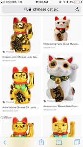 In search of- Japanese lucky cat