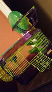 Hamster cage w Penthouse Wheel