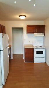 Large renovated 2 bedroom - 170 Berkshire Dr London Ontario image 1